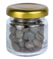 Glassbottle filled with Brachiopoda (Rhynchonella)