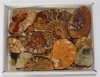 Box of Ammonite pieces varnished