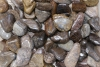 Bronzite Tumbled Stones, B-quality