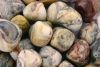 Crazy Lace Agate Tumbled Stones Mexico