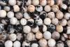 Ball (Sphere) Petrified Wood, 37-40 mm