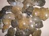 Petrified Coral Morocco, 2nd quality