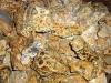 Leopardit (Onkolithe) rough 5-10 cm
