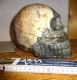 Soapstone Skull approx. 19 cm