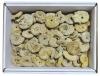 Box of Ammonites (Perisphinctes FR) 3-8 cm, B-quality