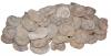 Ammonite 12 - 17 cm, Morocco