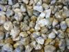 Opalith / Dendriten-Opal TS Brasilien B-Qualität