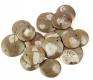 Goniatites B-Quality (with pendants)