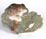 Copper No. 5