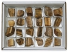 Box Tiger Eye rough, 24 pieces