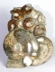 Ammonite Sculpture Ammo27